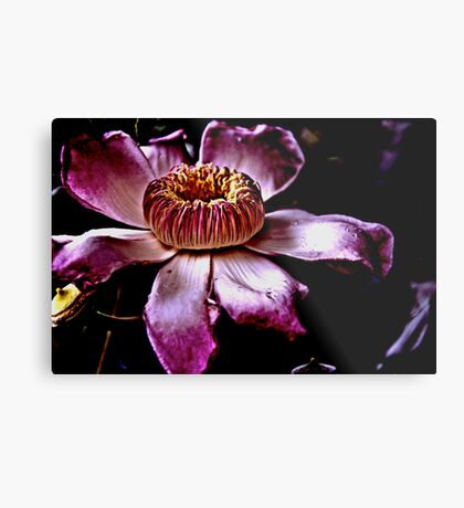 The queen in her botanic...: On 2 Featured works Metal Print