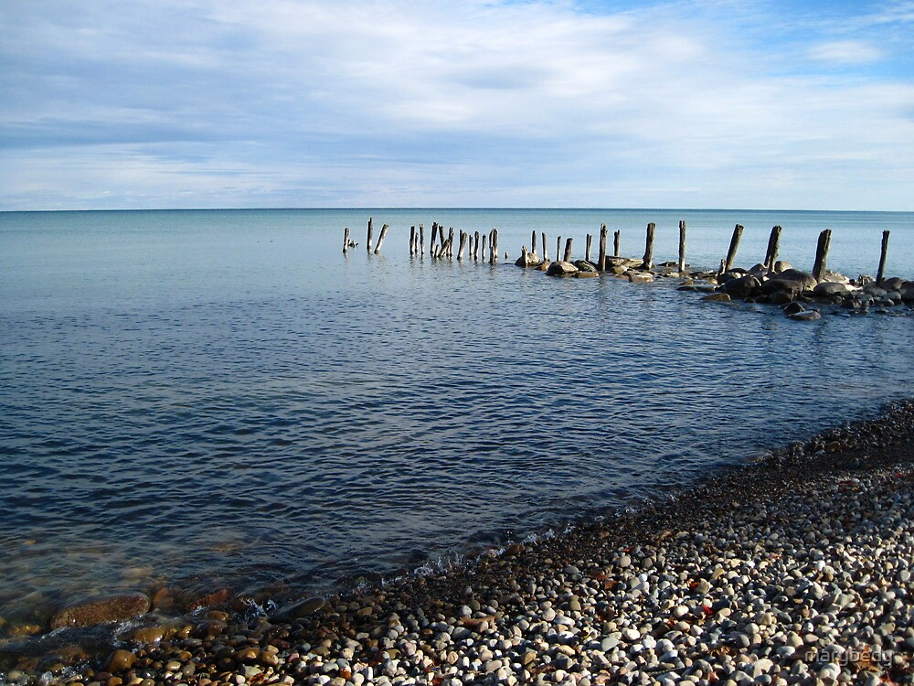 Lake Huron - Old Pilings by marybedy