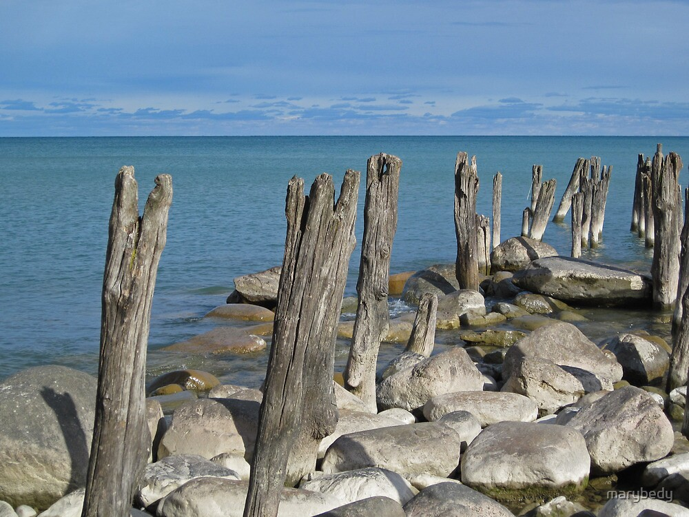 Old Pilings 7 by marybedy