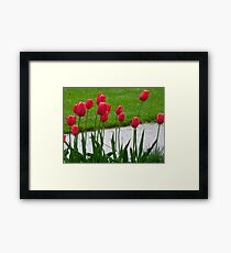 RED TALL TULIPS Framed Print