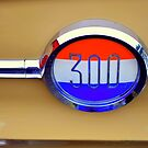 """""""300 Emblem"""" by Lynn Bawden"""