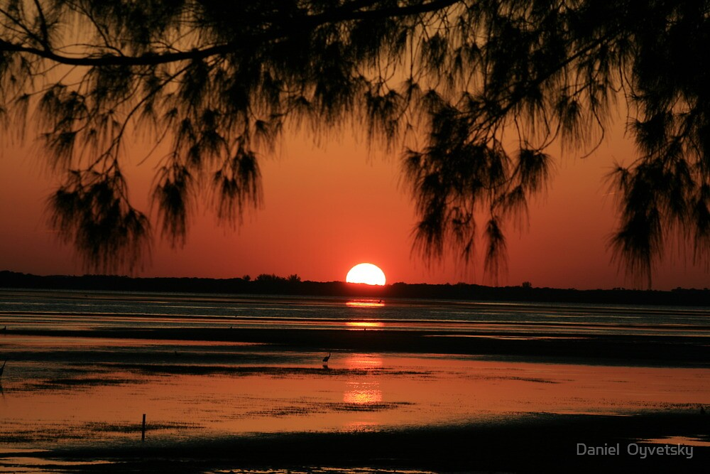 Tampa Bay Sunset May 2011  by Daniel  Oyvetsky