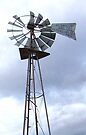 Windmill of the West by Betty  Town Duncan