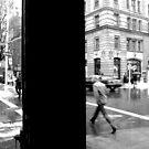 A Stroll Across University Place by Graciela Maria Solano