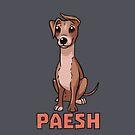 Paesch von mdoering16