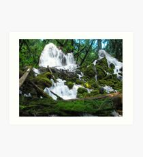 Clearwater falls Union creek area Art Print