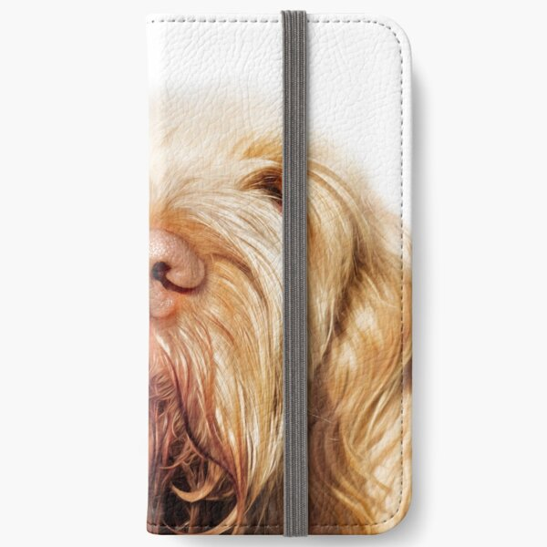Waiting for you Spinone iPhone Wallet