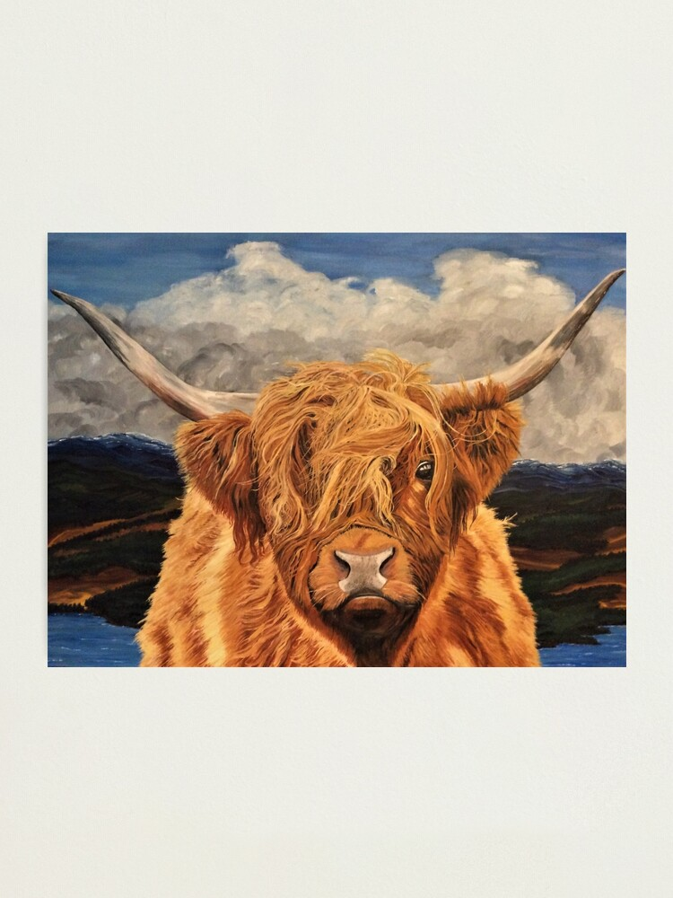 Alternate view of Highland Cow - Wall Art Photographic Print