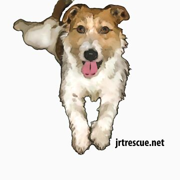 Lou Lou Series 3 from Jack Russell Rescue by JRTrescue