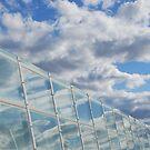 Sky Reflections by Catherine Davis