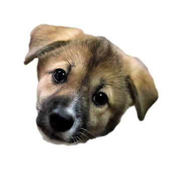 Adorable Puppy Two de KimzeyandAlex
