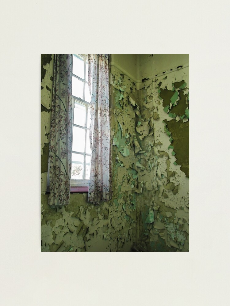 Alternate view of Curtain Of Peeling Paint Photographic Print