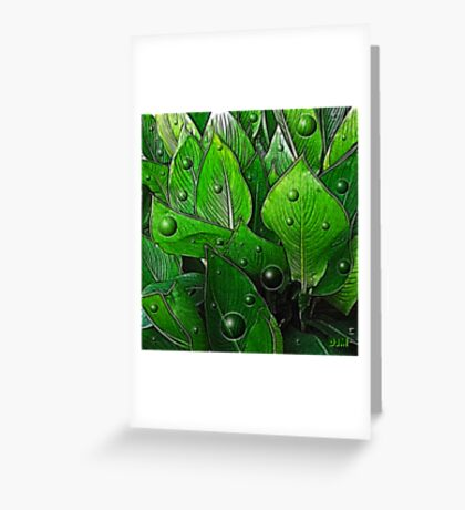 Canna Leaves Greeting Card