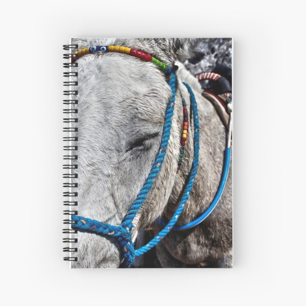 Photograph of donkey with blue bridle, Santorini Greek Islands Spiral Notebook