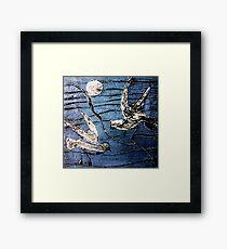 Seagulls 3 Framed Print
