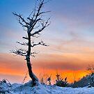 Winter Sunset by demigod