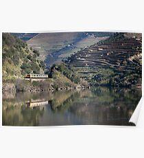 Douro landscapes (1) Poster