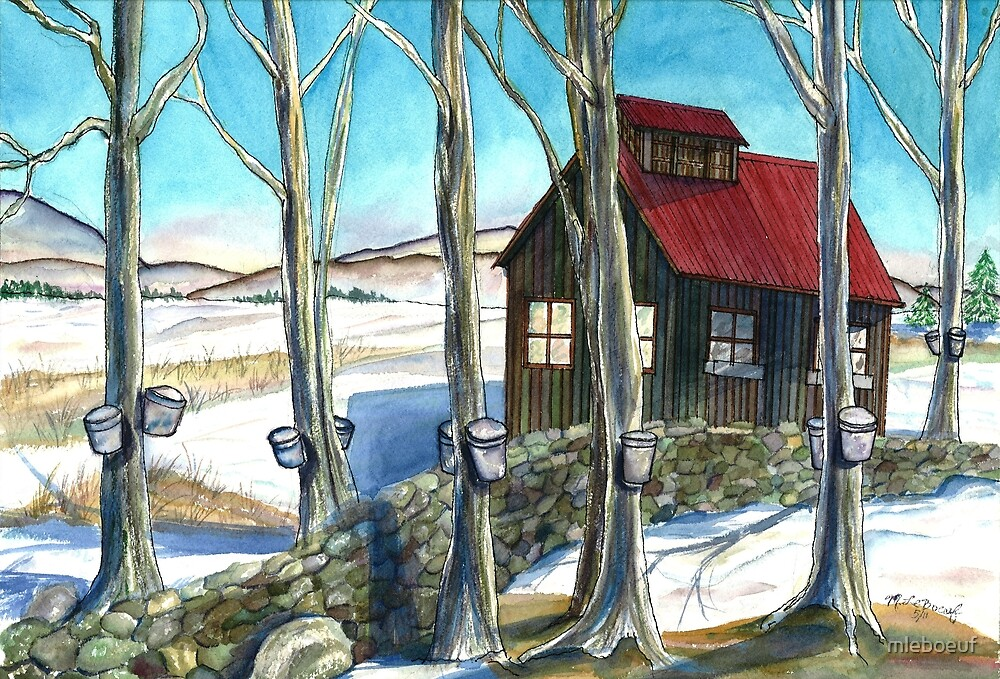 Maple Sugaring in Vermont by mleboeuf
