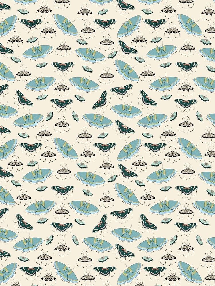 Moths by MeredithWatson