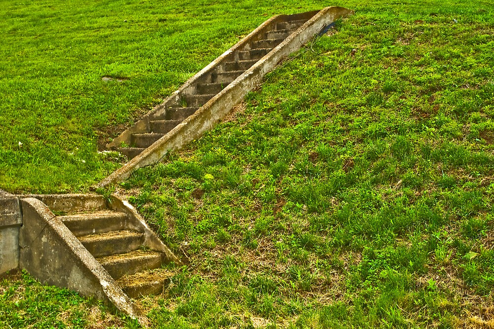 Stairs to Nowhere by Bryan D. Spellman