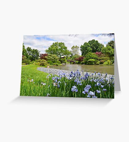 Light purple iris in Japanese Garden Greeting Card