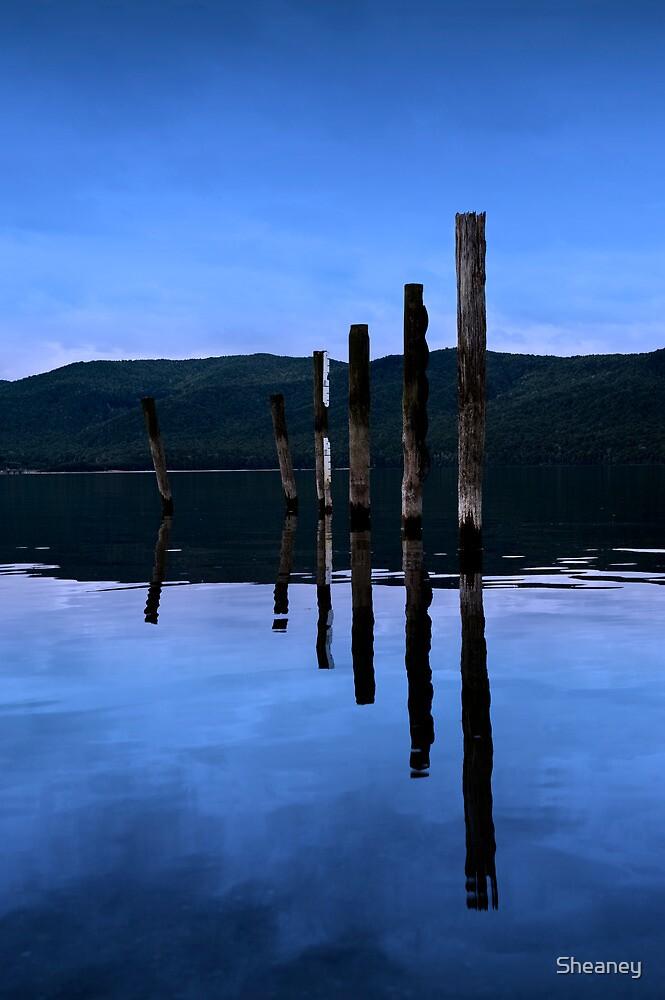 Te Anau Reflections by Sheaney