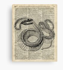 Boa Snake Skeleton,Ink and Pen Anatomy Chart,Vintage Dictionary Art Canvas Print