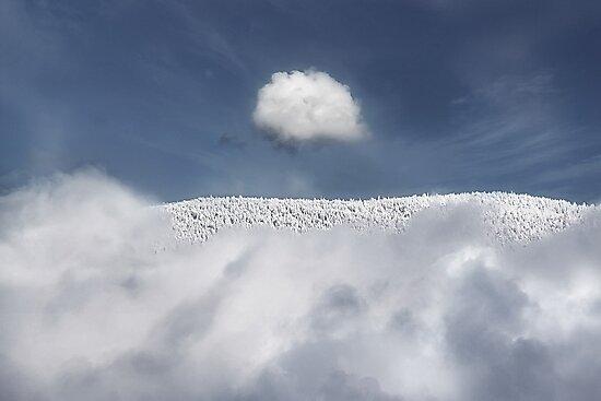 pinnacle by John Poon