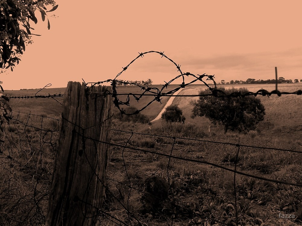 this side of the fence by fazza