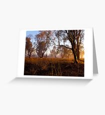 """Early Morning Glow"" Greeting Card"
