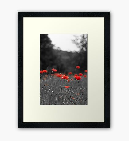 Selective Red Framed Print