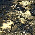 Anna Ruby Creek - Georgia, USA by glennc70000