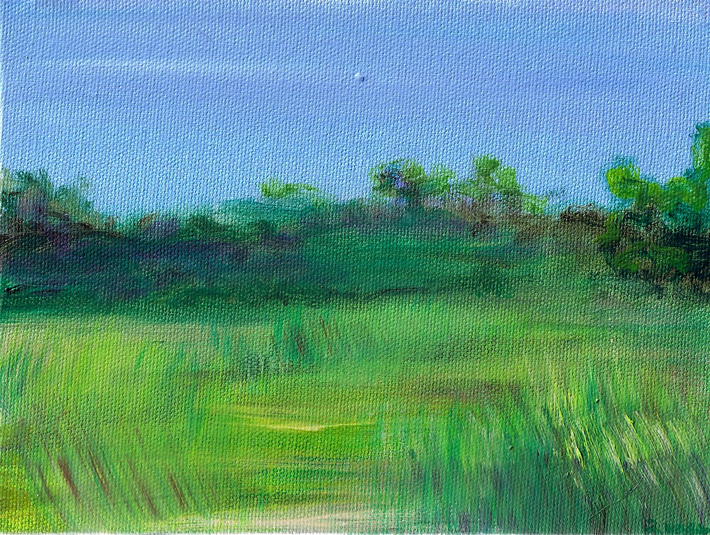 Shaded Meadow by Regina Valluzzi
