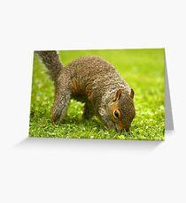 Earthmover Greeting Card