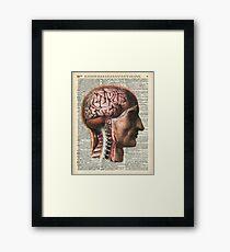 Human Brain Medical Chart Illustration,Vintage Dictionary Art  Framed Print