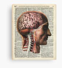 Human Brain Medical Chart Illustration,Vintage Dictionary Art  Canvas Print