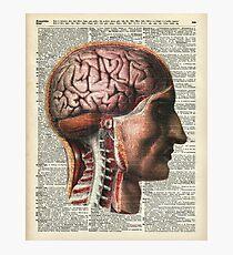 Human Brain Medical Chart Illustration,Vintage Dictionary Art  Photographic Print