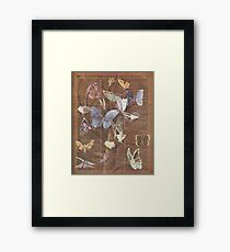 Colourful Butterflies on a Tree, Vintage Dictionary Art Framed Print