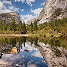 Mirror Mirror On the Lake by Leasha Hooker