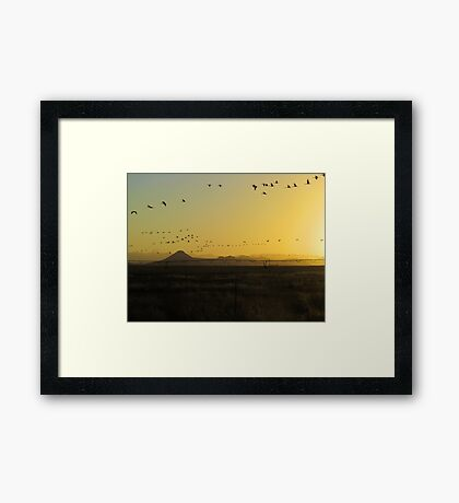 South to North  (best viewed larger) Framed Print