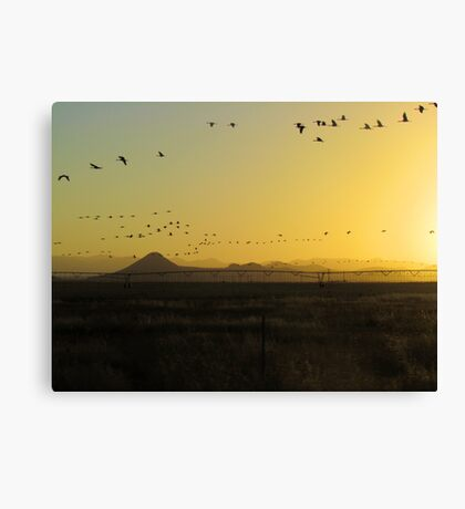South to North  (best viewed larger) Canvas Print