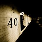 40 by Richard Pitman