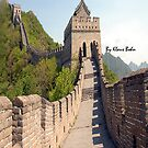I walked the great wall of China by Klaus Bohn