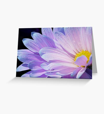 Sunshine Within Greeting Card