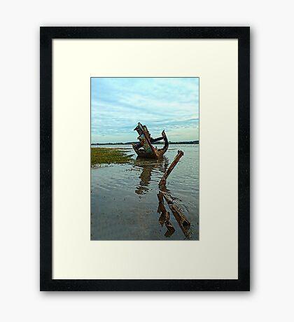 FD Clarin Bow Framed Print