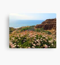 Water Over The Horizon Canvas Print