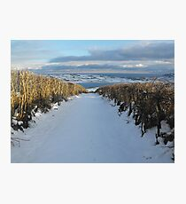 Old lane in snow Photographic Print