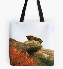 Autumn at Writing-on-Stone Tote Bag