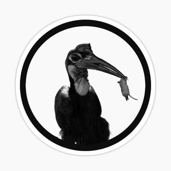 Abby, an Abyssinian ground hornbill Sticker
