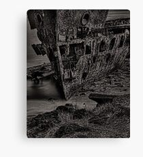 Firmly grounded Canvas Print